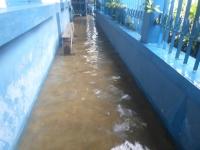 2020-04-28-inondation-Mdp-et-Fav-9